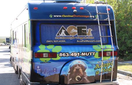 caninecastawaysbus